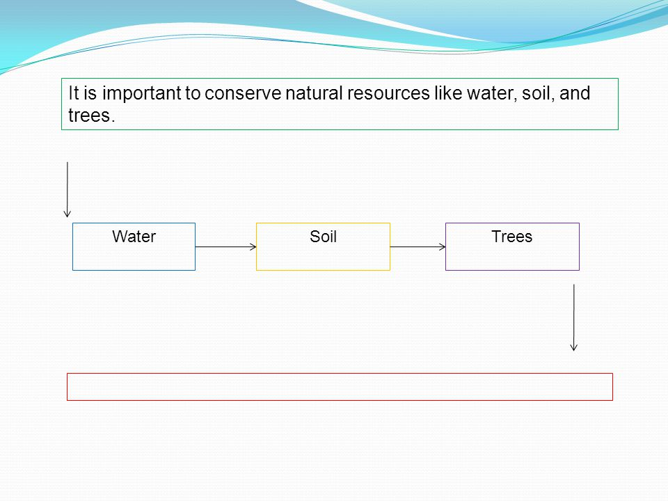 It is important to conserve natural resources like water, soil, and trees. WaterSoilTrees