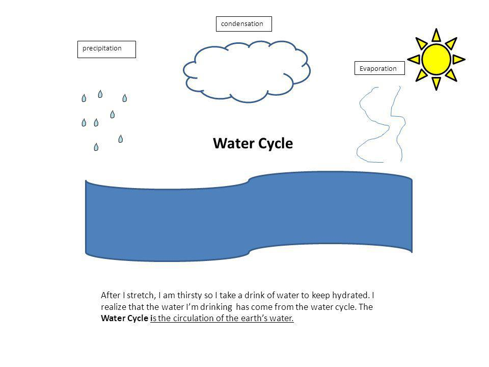 Water Cycle After I stretch, I am thirsty so I take a drink of water to keep hydrated.