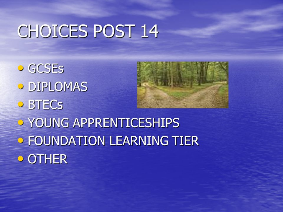 CHOICES POST 14 GCSEs GCSEs DIPLOMAS DIPLOMAS BTECs BTECs YOUNG APPRENTICESHIPS YOUNG APPRENTICESHIPS FOUNDATION LEARNING TIER FOUNDATION LEARNING TIER OTHER OTHER