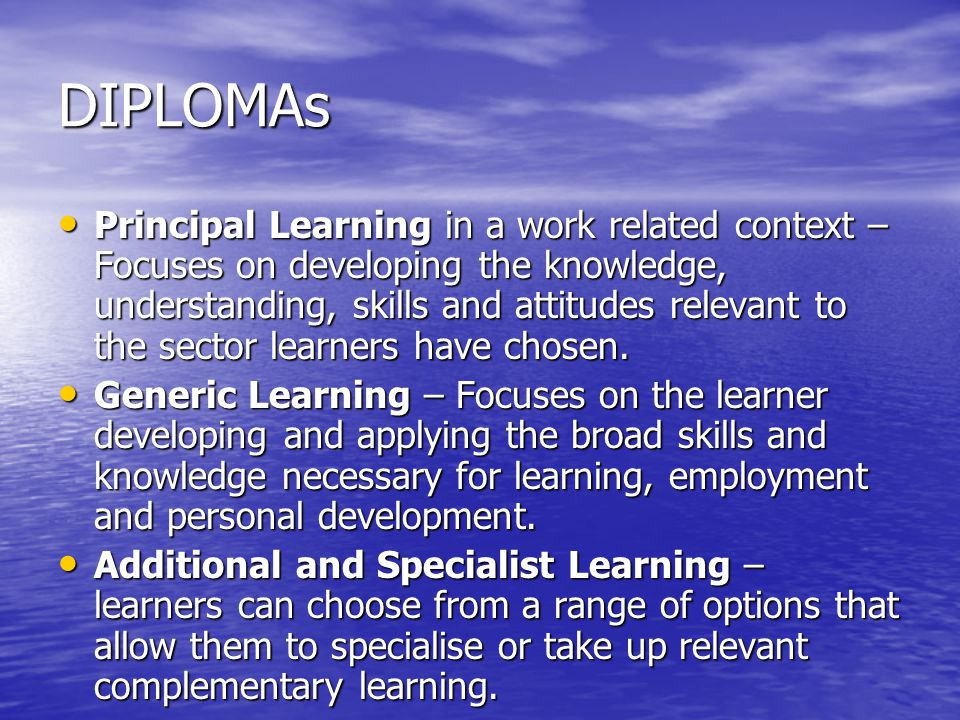 DIPLOMAs Principal Learning in a work related context – Focuses on developing the knowledge, understanding, skills and attitudes relevant to the sector learners have chosen.