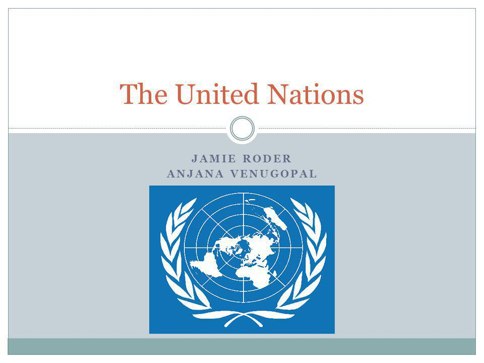 IMPORTANT DOCUMENTS: THE U.N.CHARTER THE UNIVERSAL DECLARATION OF HUMAN RIGHTS THE U.N.