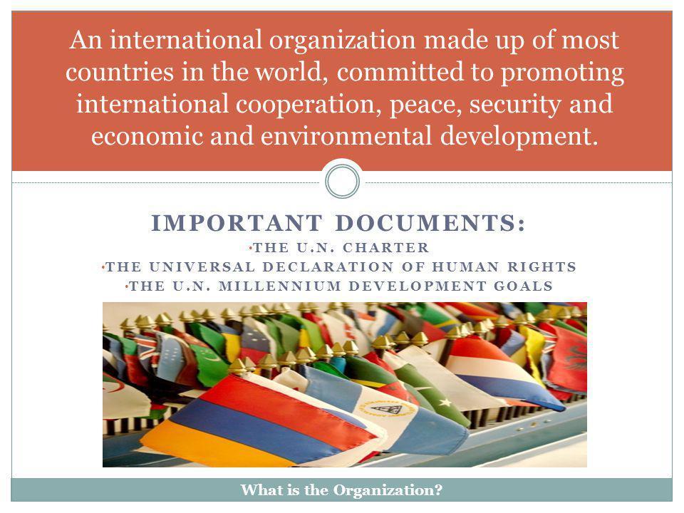 IMPORTANT DOCUMENTS: THE U.N. CHARTER THE UNIVERSAL DECLARATION OF HUMAN RIGHTS THE U.N. MILLENNIUM DEVELOPMENT GOALS An international organization ma