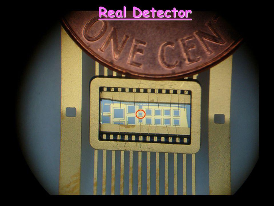 Real Detector