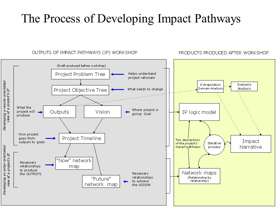 The Process of Developing Impact Pathways