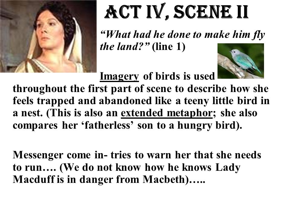 """Act Iv, Scene ii """"What had he done to make him fly the land? (line the land?"""" (line 1) Imagery of birds is used throughout the first part of scene to"""