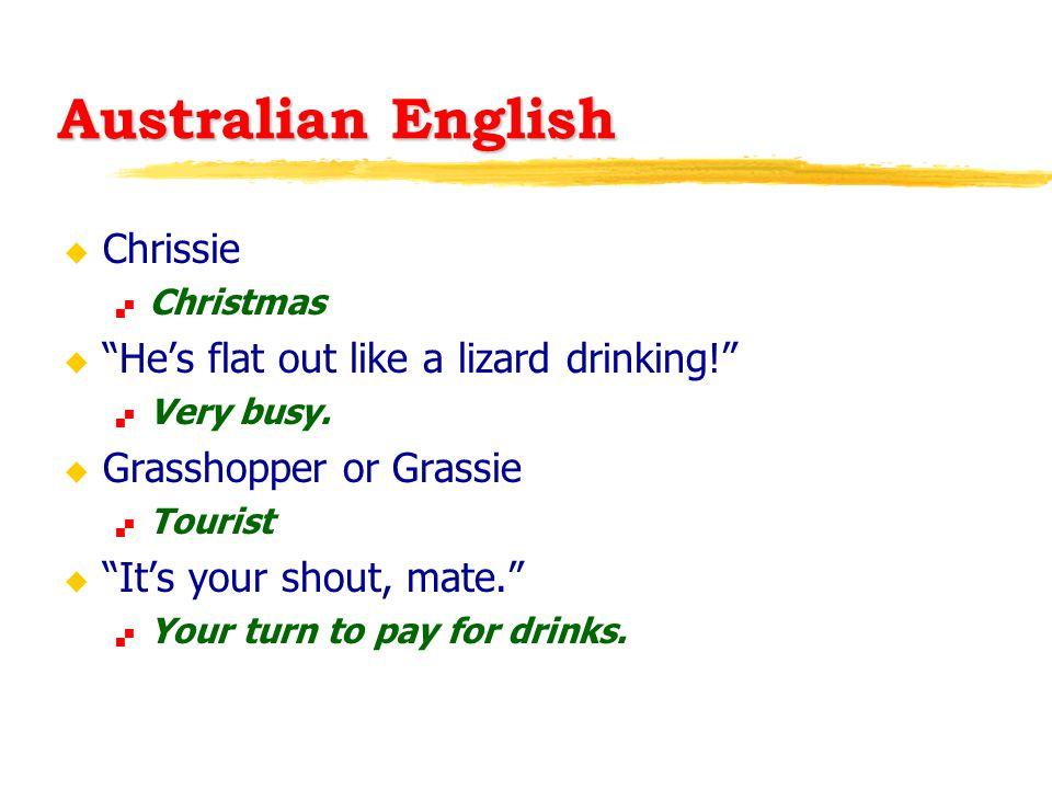 Australian English u Chrissie  Christmas u He's flat out like a lizard drinking!  Very busy.
