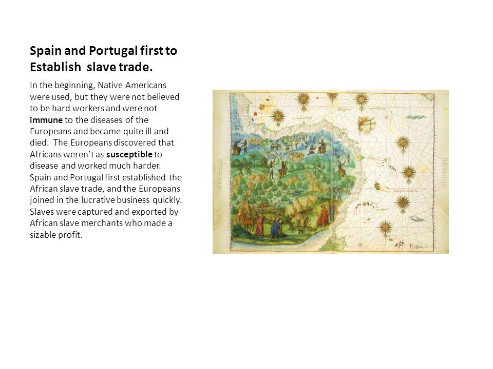 Spain and Portugal first to Establish slave trade. In the beginning, Native Americans were used, but they were not believed to be hard workers and wer