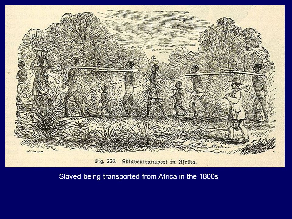 Slaved being transported from Africa in the 1800s