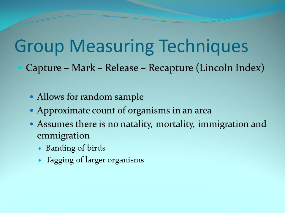 Group Measuring Techniques Capture – Mark – Release – Recapture (Lincoln Index) Allows for random sample Approximate count of organisms in an area Ass