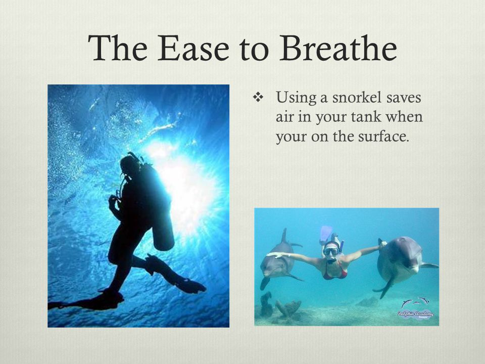 The Ease to Breathe  Using a snorkel saves air in your tank when your on the surface.
