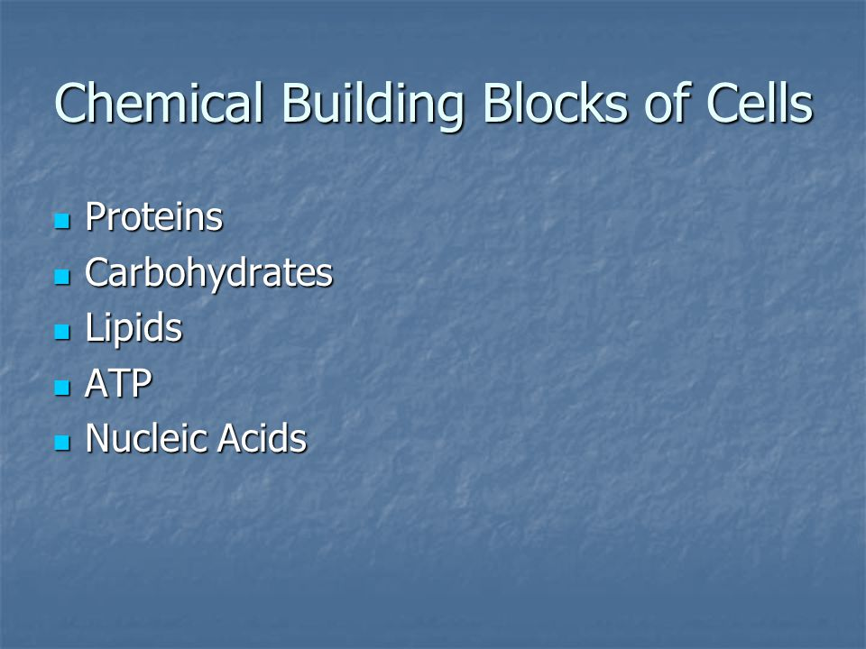 Chemical Building Blocks of Cells Proteins Proteins Carbohydrates Carbohydrates Lipids Lipids ATP ATP Nucleic Acids Nucleic Acids