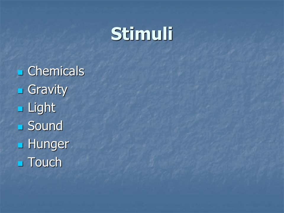 Stimuli Chemicals Chemicals Gravity Gravity Light Light Sound Sound Hunger Hunger Touch Touch