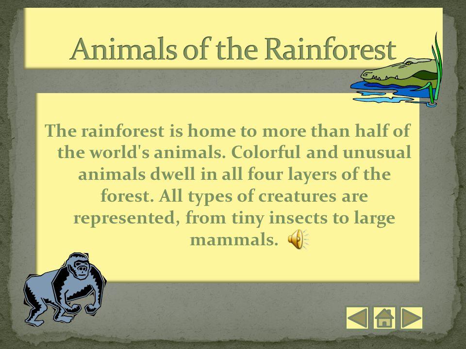 Ms. Barnhart's 4 th grade class ReptilesQuiz Standards Amphibians and Arthropods Mammals Birds Introduction