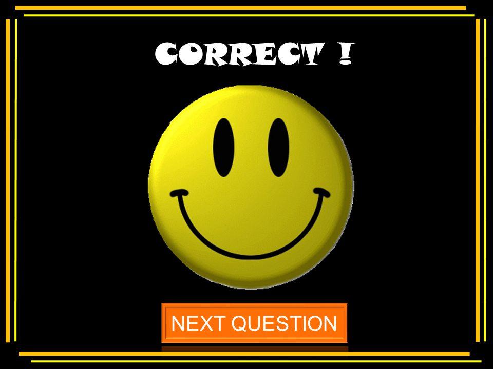 Multiple choice Insert text here Insert incorrect answer here Insert correct answer here Insert incorrect answer here