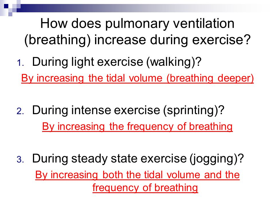 How does pulmonary ventilation (breathing) increase during exercise.