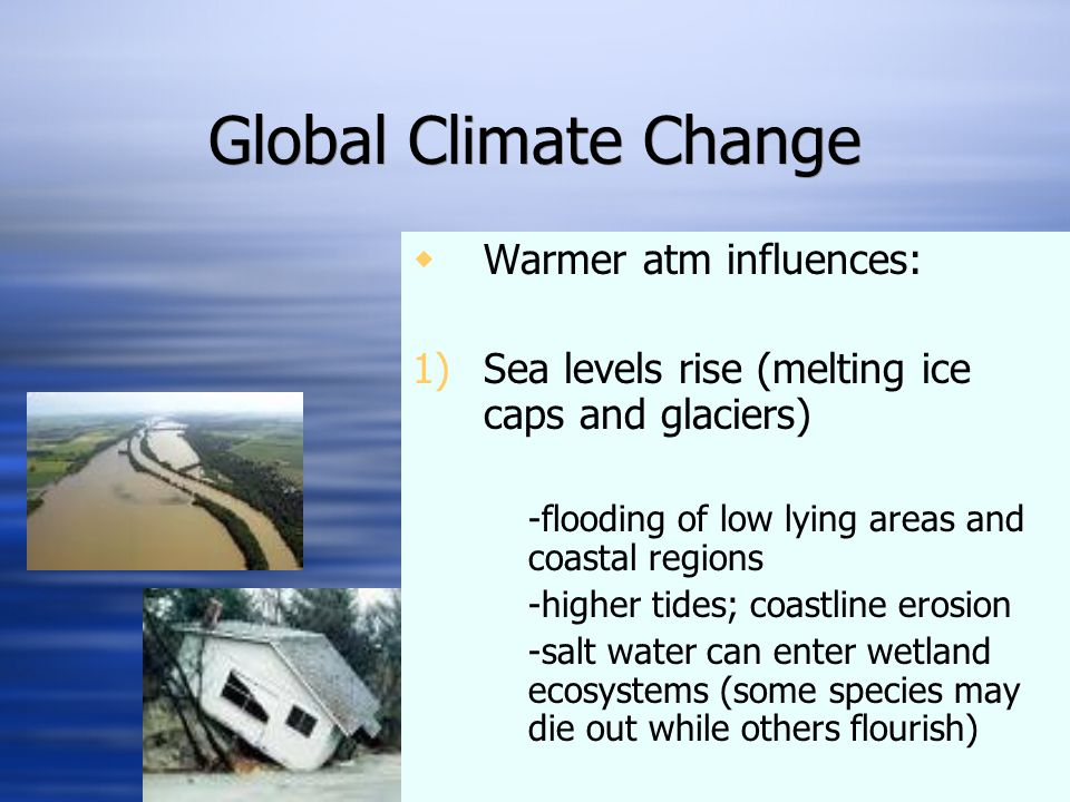 Global Climate Change  Warmer atm influences: 1)Sea levels rise (melting ice caps and glaciers) -flooding of low lying areas and coastal regions -higher tides; coastline erosion -salt water can enter wetland ecosystems (some species may die out while others flourish)  Warmer atm influences: 1)Sea levels rise (melting ice caps and glaciers) -flooding of low lying areas and coastal regions -higher tides; coastline erosion -salt water can enter wetland ecosystems (some species may die out while others flourish)