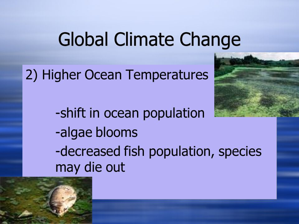 Global Climate Change 3) More Energy in the ATM -severe weather: storms, tornadoes, hurricanes -floods -droughts (increase in Forrest Fires) This will impact AGRICULTURE, HUMAN HEALTH, and PROPERTY.