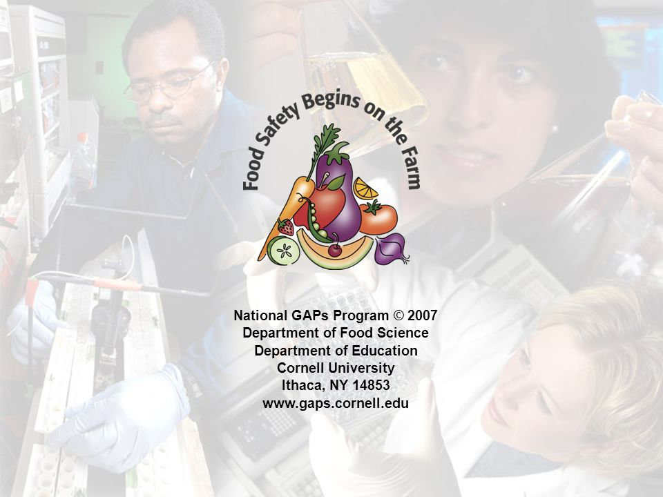 National GAPs Program © 2007 Department of Food Science Department of Education Cornell University Ithaca, NY 14853 www.gaps.cornell.edu