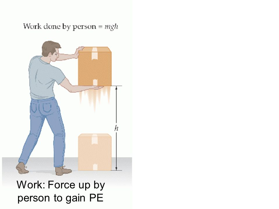 Work: Force up by person to gain PE Work: Force down by gravity to change PE into KE