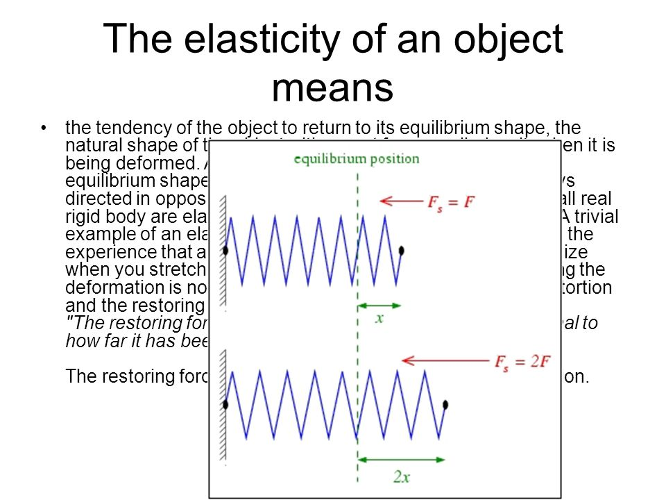 The elasticity of an object means the tendency of the object to return to its equilibrium shape, the natural shape of the object with no net force app
