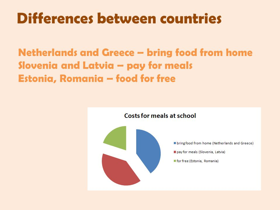 Differences between countries Netherlands and Greece – bring food from home Slovenia and Latvia – pay for meals Estonia, Romania – food for free