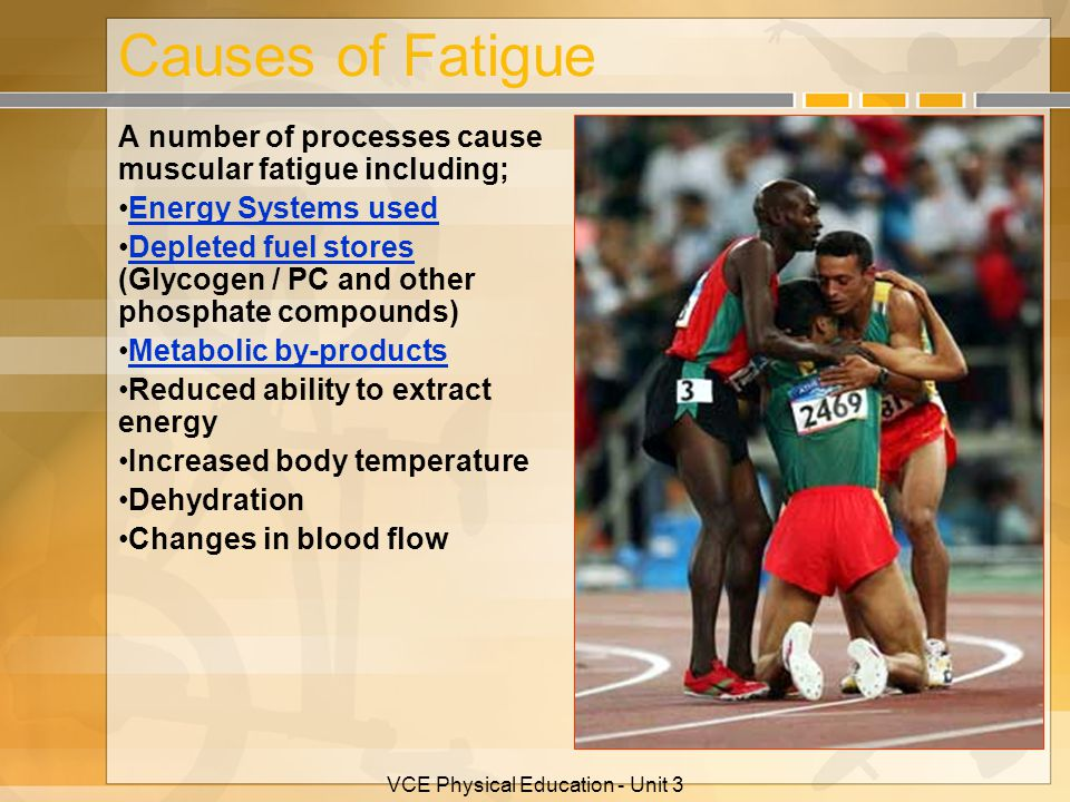 VCE Physical Education - Unit 3 Causes of Fatigue A number of processes cause muscular fatigue including; Energy Systems used Depleted fuel stores (Gl