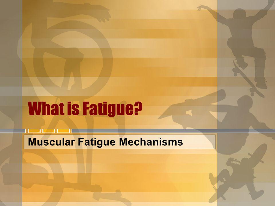 The Redistribution of Blood Flow Muscular Fatigue Mechanisms