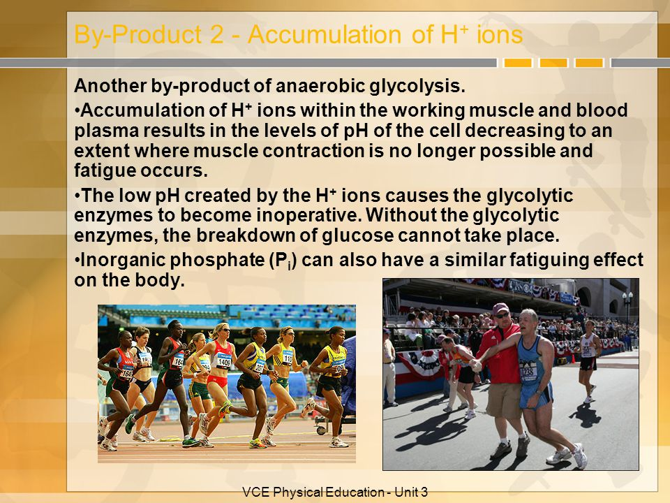 VCE Physical Education - Unit 3 By-Product 2 - Accumulation of H + ions Another by-product of anaerobic glycolysis. Accumulation of H + ions within th