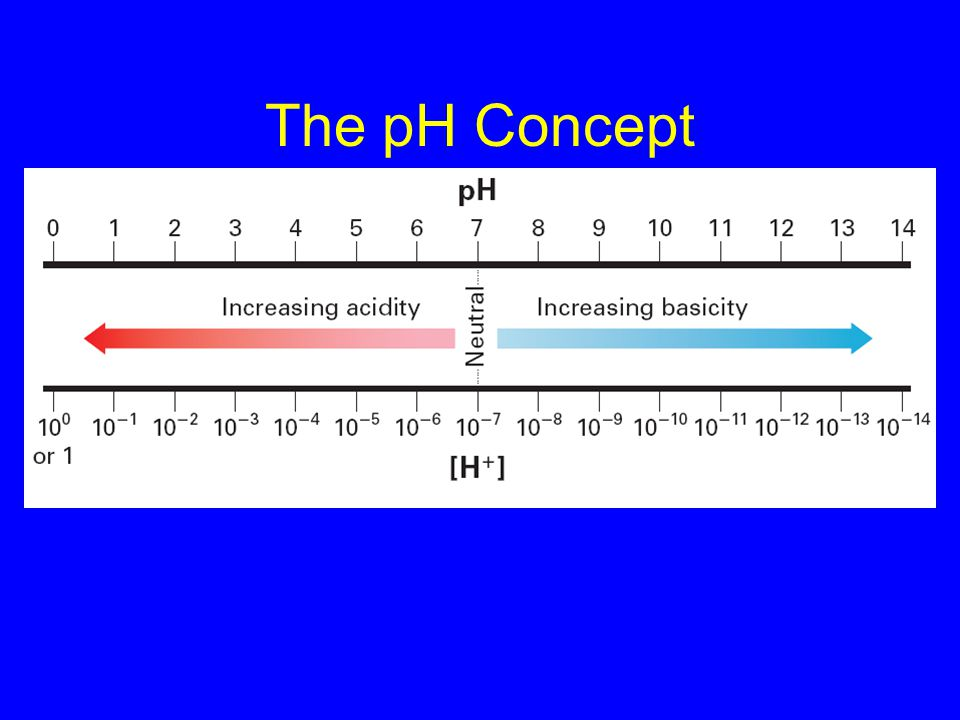 The pH Concept –pH and Significant Figures 19.2