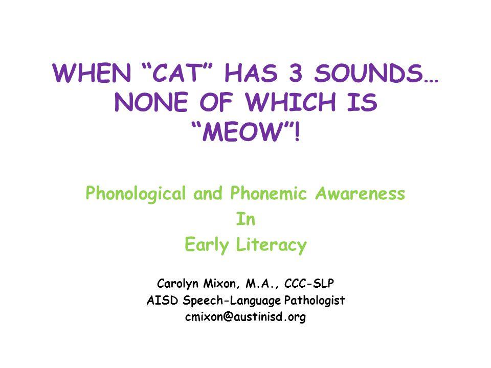 The Phons Not! Phonological Awareness Phonemic Awareness Phonics