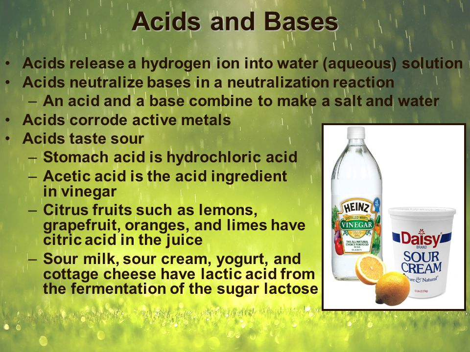 Acids and Bases Bases release a hydroxide ion into water solution Bases neutralize acids in a neutralization reaction –Acid plus base makes water plus a salt Bases denature protein –Bases are slippery to the touch –Strong bases are very dangerous because a great amount of the material of humans is made of protein Bases taste bitter –There are very few food materials that are alkaline, but those that are taste bitter