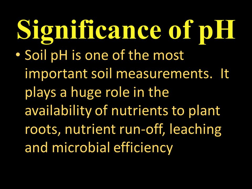 Soil pH is one of the most important soil measurements. It plays a huge role in the availability of nutrients to plant roots, nutrient run-off, leachi