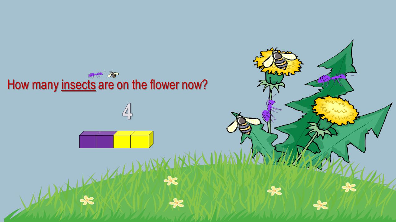 How many insects are on the flower now?