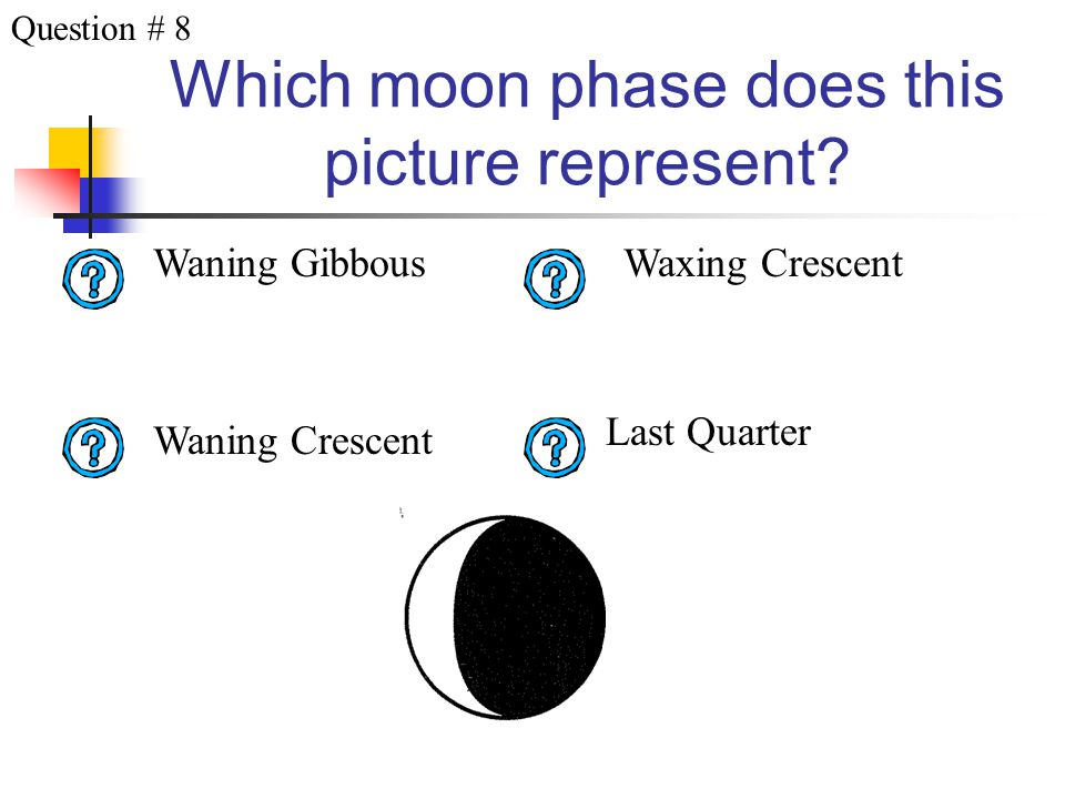 Which moon phase does this picture represent? Last Quarter New MoonFirst Quarter Waning Crescent Question # 7