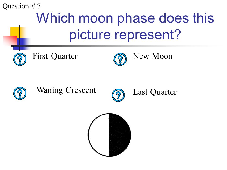 Which moon phase does this picture represent? Waning Gibbous Full Moon Waxing Gibbous Last Quarter Question # 6
