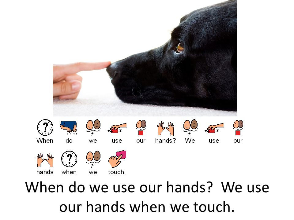 When do we use our hands We use our hands when we touch.