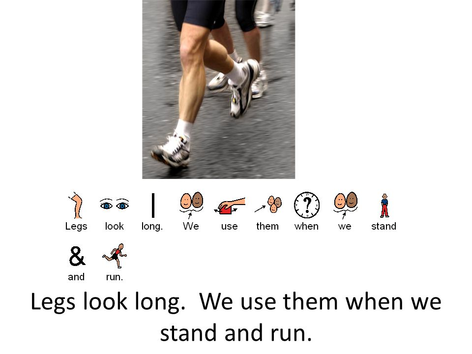 Legs look long. We use them when we stand and run.