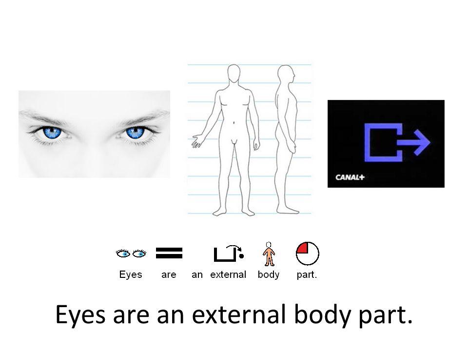 Eyes are an external body part.