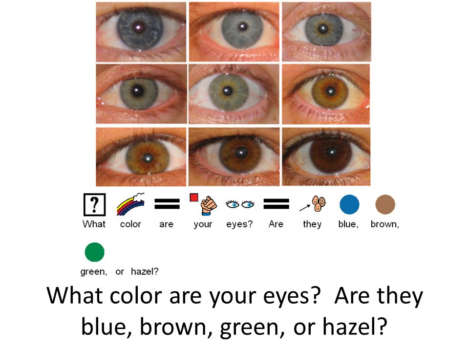 What color are your eyes Are they blue, brown, green, or hazel