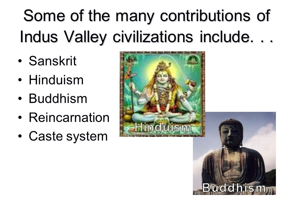 Some of the many contributions of Indus Valley civilizations include... Sanskrit Hinduism Buddhism Reincarnation Caste system