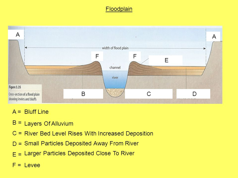 A A BCD E FF A = B = C = D = E = F = Bluff Line Layers Of Alluvium River Bed Level Rises With Increased Deposition Small Particles Deposited Away From