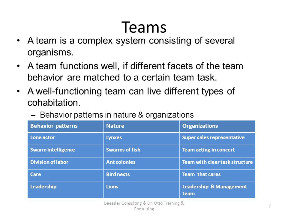 Teams A team is a complex system consisting of several organisms.