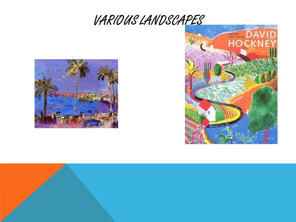 VARIOUS LANDSCAPES