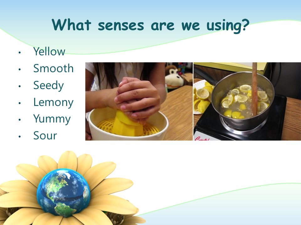 What senses are we using? Montessori Sound Cylinders
