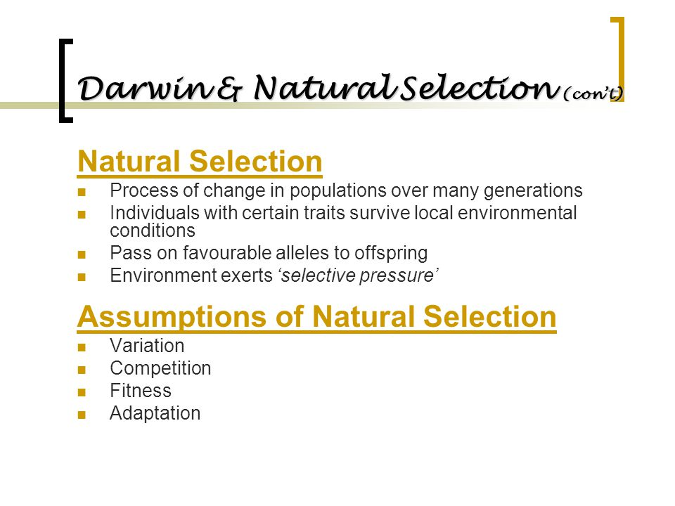 Darwin & Natural Selection (con't) Natural Selection Process of change in populations over many generations Individuals with certain traits survive lo