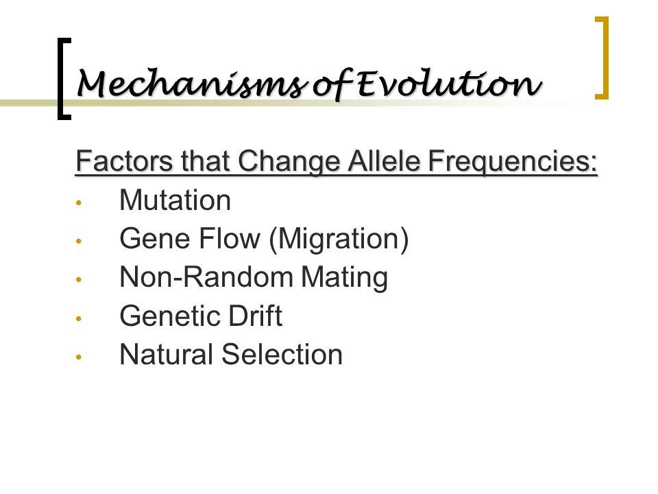 Mechanisms of Evolution Factors that Change Allele Frequencies: Mutation Gene Flow (Migration) Non-Random Mating Genetic Drift Natural Selection