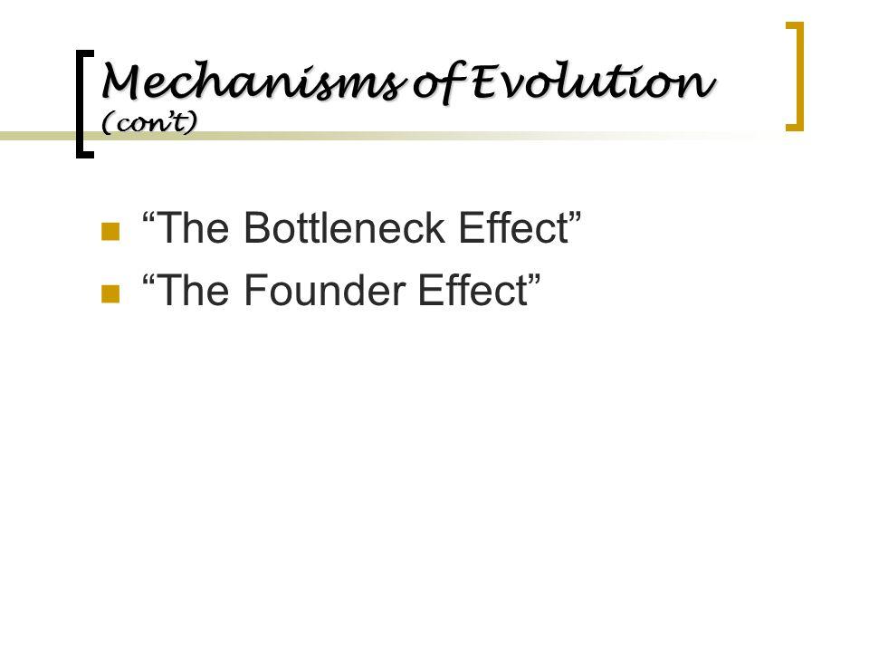 "Mechanisms of Evolution (con't) ""The Bottleneck Effect"" ""The Founder Effect"""