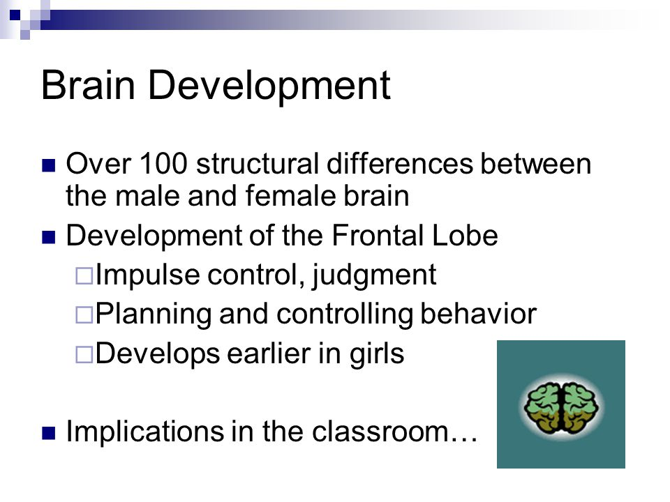 Brain Development Over 100 structural differences between the male and female brain Development of the Frontal Lobe  Impulse control, judgment  Planning and controlling behavior  Develops earlier in girls Implications in the classroom…