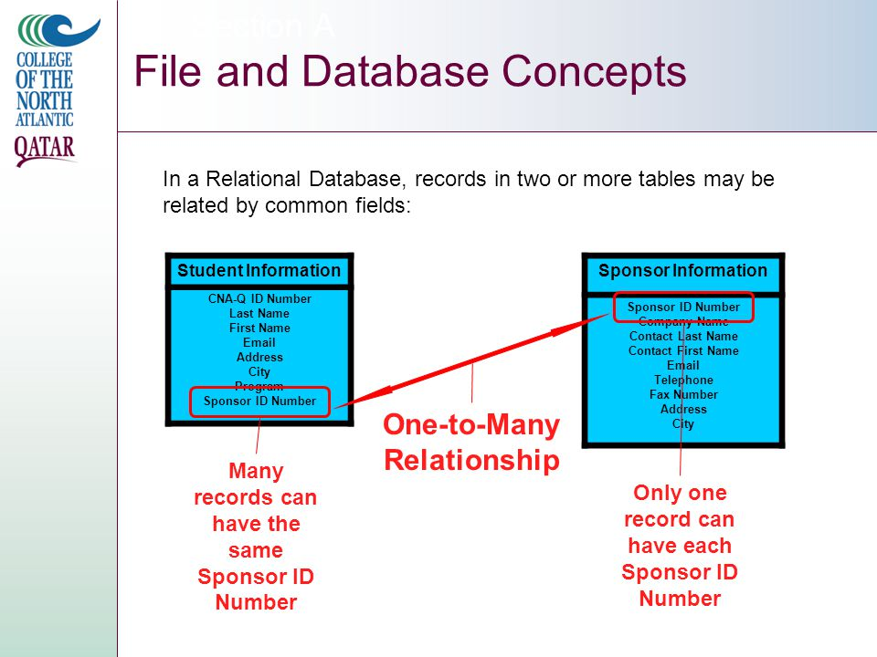 Section A File and Database Concepts Student Information CNA-Q ID Number Last Name First Name Email Address City Program Sponsor ID Number In a Relational Database, records in two or more tables may be related by common fields: Sponsor Information Sponsor ID Number Company Name Contact Last Name Contact First Name Email Telephone Fax Number Address City One-to-Many Relationship Many records can have the same Sponsor ID Number Only one record can have each Sponsor ID Number