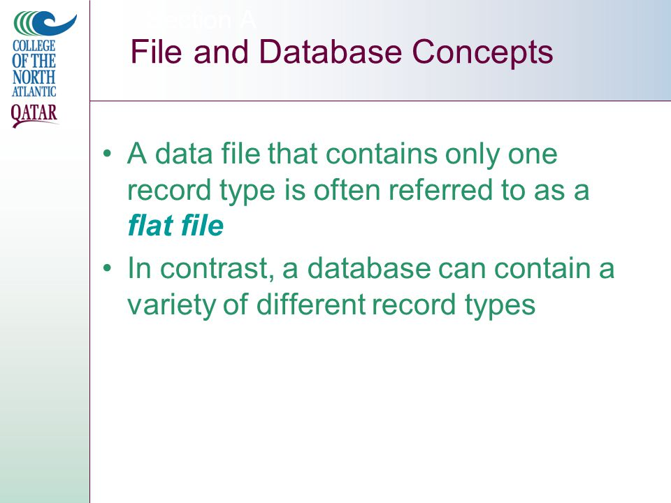Section A File and Database Concepts A data file that contains only one record type is often referred to as a flat file In contrast, a database can contain a variety of different record types